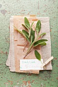 Fresh sage with a label