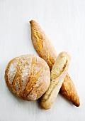 Boule, Ficelle und Baguette (French white bread)