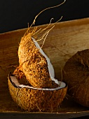 Coconuts, whole and halved