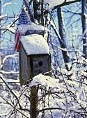 Vogelhäuschen im Schnee