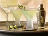 Rosemary Cosmos on a Tray; Cocktail Shaker