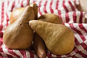 Bosc Pears on a Red and White Striped Towel