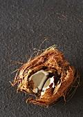 A coconut which has been broken open