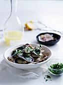 Muscheln mit Zitronensauce und Kräutern