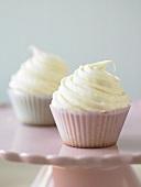 Two Vanilla Cupcakes