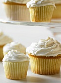 Assorted Size Vanilla Cupcakes
