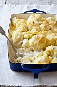Cauliflower Gratin in a Baking Dish