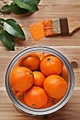 Oranges in a Paint Can with a Paint Brush with Orange Paint