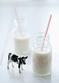 Two Glasses of Milk with Straws; Cow Figurine
