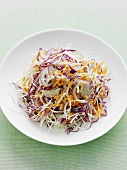 Plate of shredded cabbage and carrot