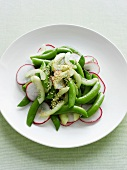 Plate of radish and snow pea salad