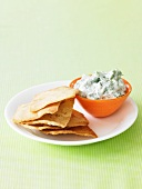 Savory Yogurt Dip with Toasted Pita Bread