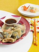 Vegetable Dumplings with Soy Sauce