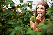 Woman eating raspberries from plant