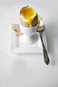 Weich gekochtes Ei im Eierbecher