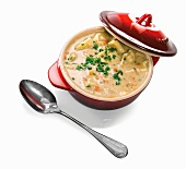Pot of Chicken and Dumpling Soup; White Background; Spoon