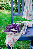 A bunch of lavender in a basket on a garden chair