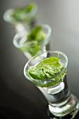 Mint tea in shot glasses
