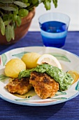 Fried whitefish with a herb sauce (Scandinavia)
