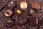 Verschiedene Schokoladenpralinen