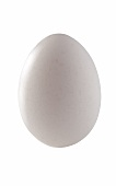 A hen's egg