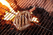 Grilled Buffalo Sirloin; On the Grill