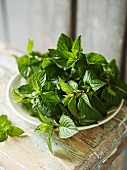 A plate of fresh mint