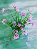 Garlic chive flowers in a glass
