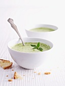 Wild herb soup