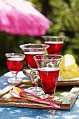 Hibiscus Cosmopolitans on a garden table