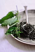 Stinging nettles, fresh and dried