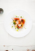 Lobster salad with citrus fruits and radishes on a plate
