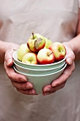 Hands holding a stack of bowls with apples