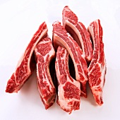 Raw Beef Ribs on a White Background
