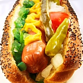 Chicago Hot Dog with Peppers, Onions and Mustard; Close Up