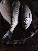 Three fish on a chopping board