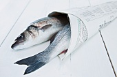 Two sea bass wrapped in newspaper
