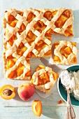 Apricot tray bake
