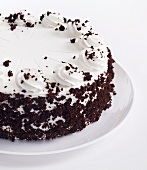 White Frosted Cake with Chocolate Crumbs