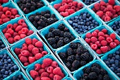 Baskets of Organic Blueberries, Raspberries and Blackberries at a Market