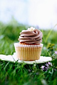 Frosted Cupcake on a Small Plate in the Grass