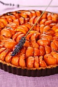 Apricot tart with lavender