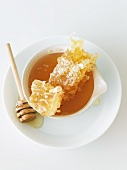 Honey Comb in a Bowl of Honey