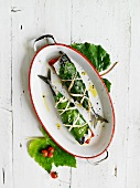 Mackerel wrapped in vine leaves with lemons