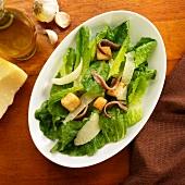 Caesar Salad mit Anchovis