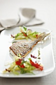 Fried sea bream fillet