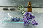 Dried lavender, posy of fresh lavender and small bottle of lavender oil