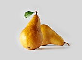 Two Bosc Pears on a White Background