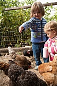 Two Young Girls Feeding Chickens