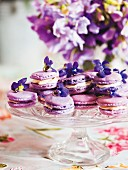 Macaroons with violet flowers